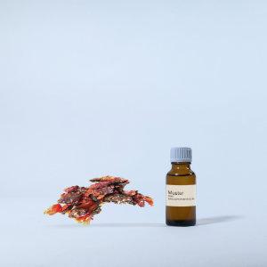 Benzoe Tinktur Parfumöl