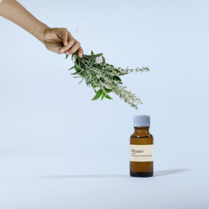 Wiesenkräuter Parfumöl 20ml